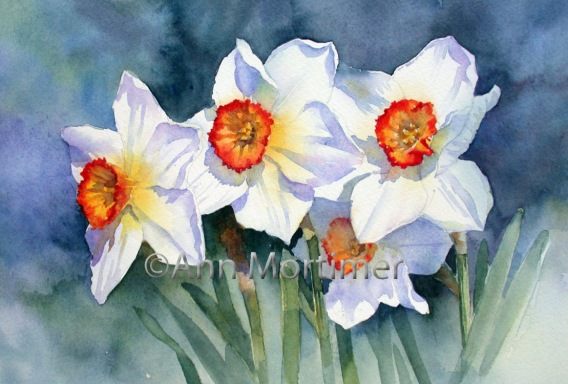 Three narcissi