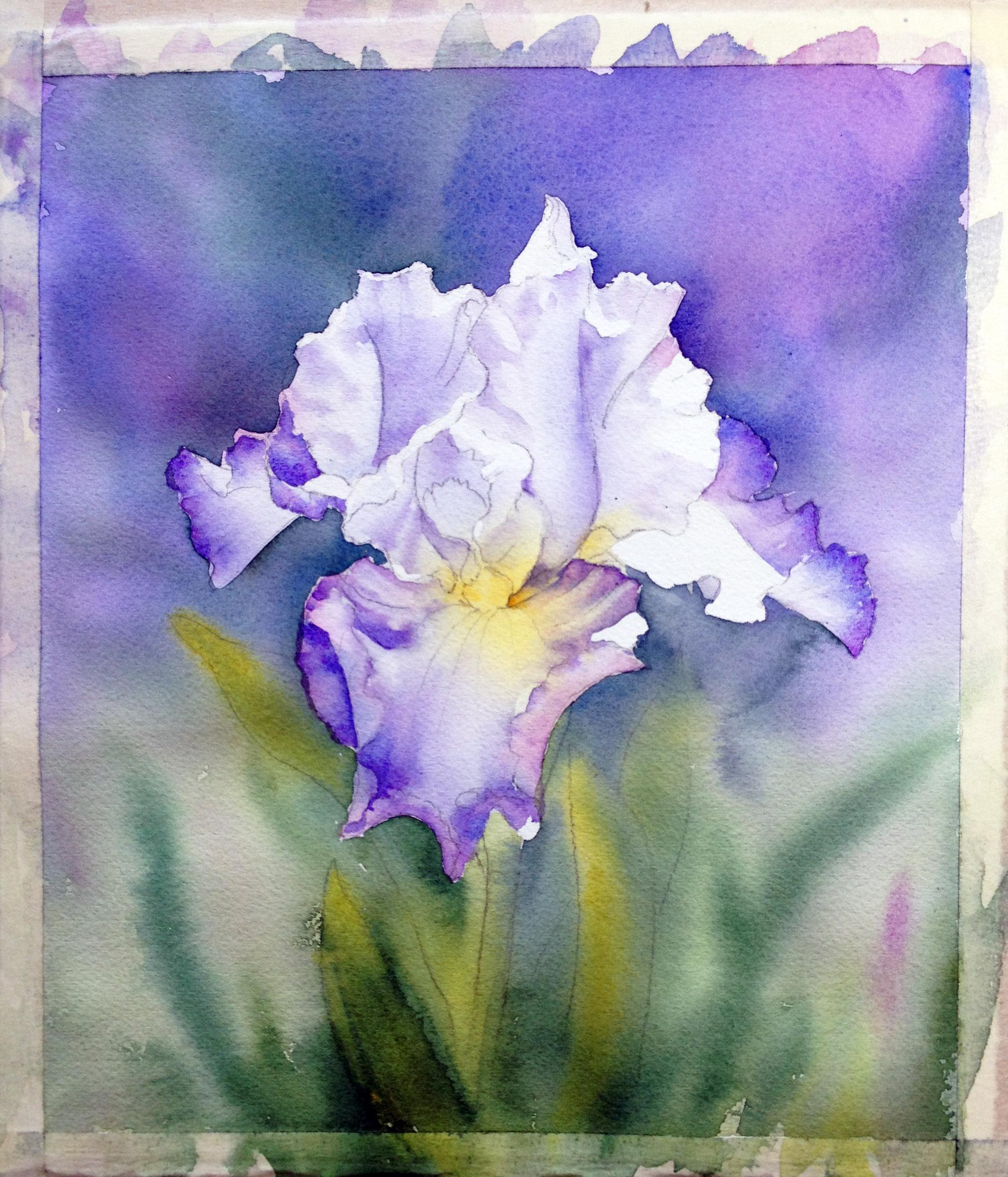 Iris step by step ann mortimer art izmirmasajfo
