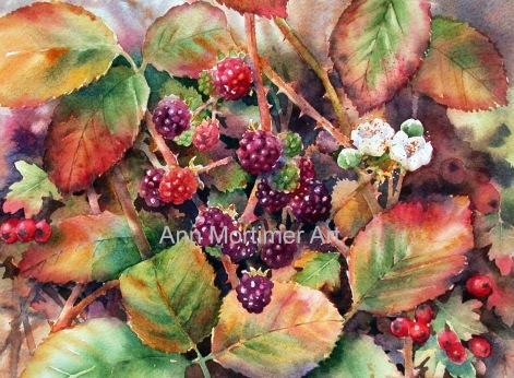 copyright blackberries stage 6