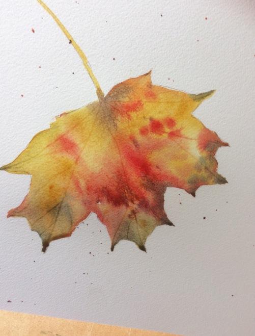 colour moving