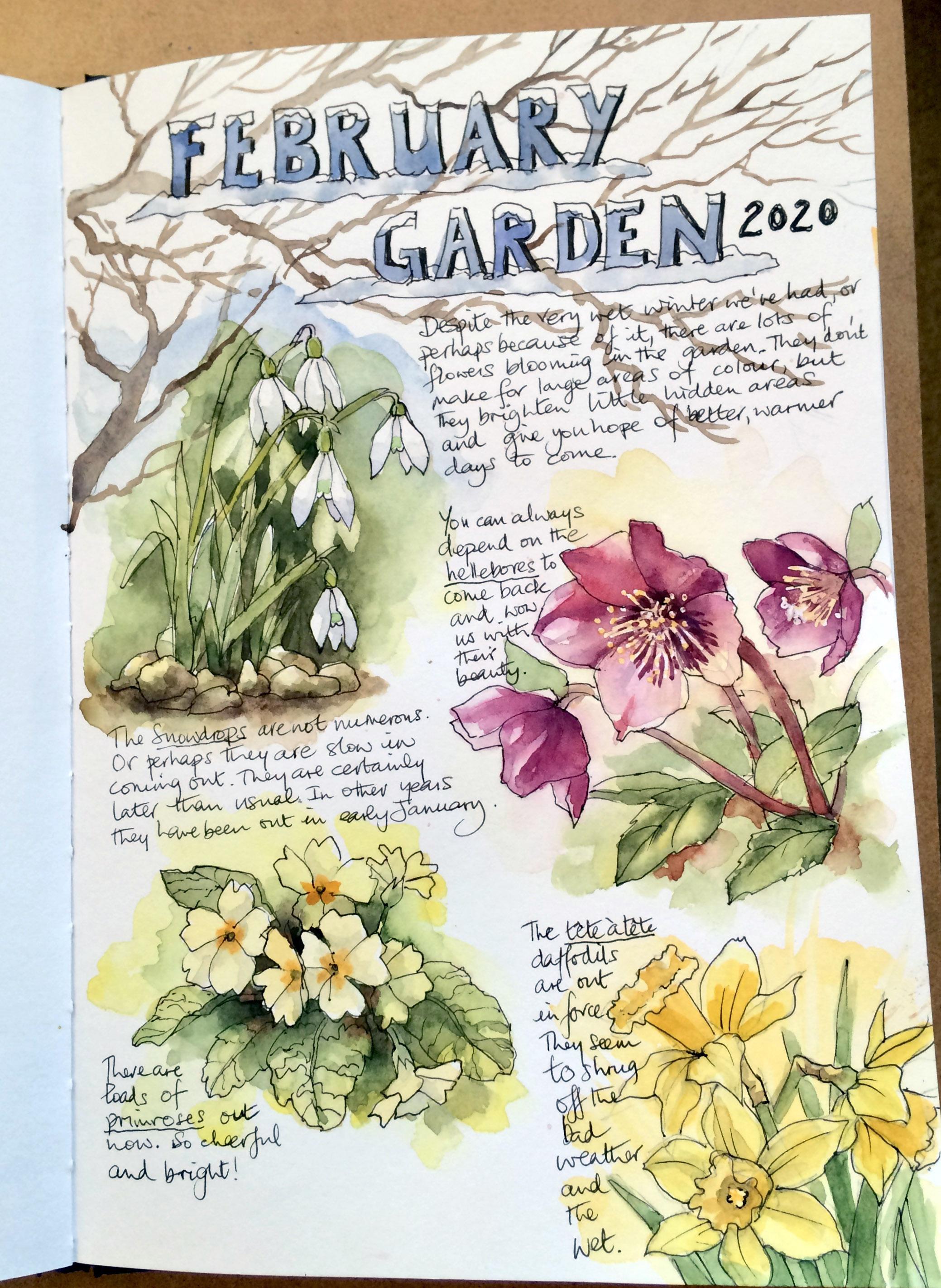 feb garden